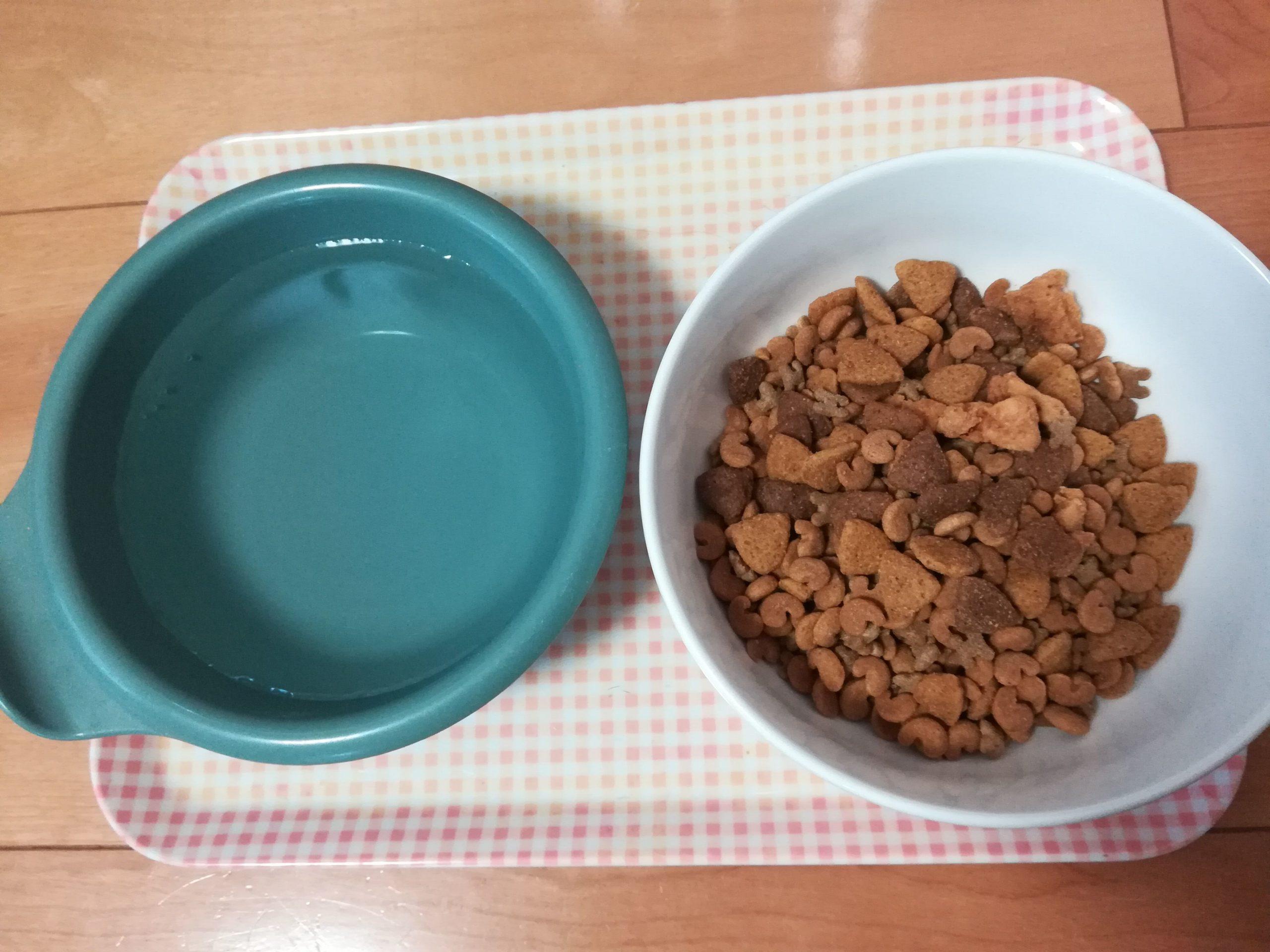 アポロのご飯と水