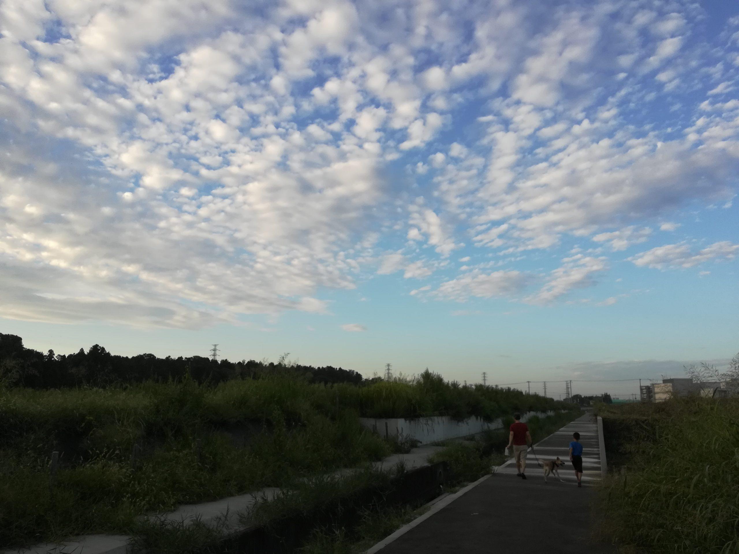 散歩道の綺麗な空
