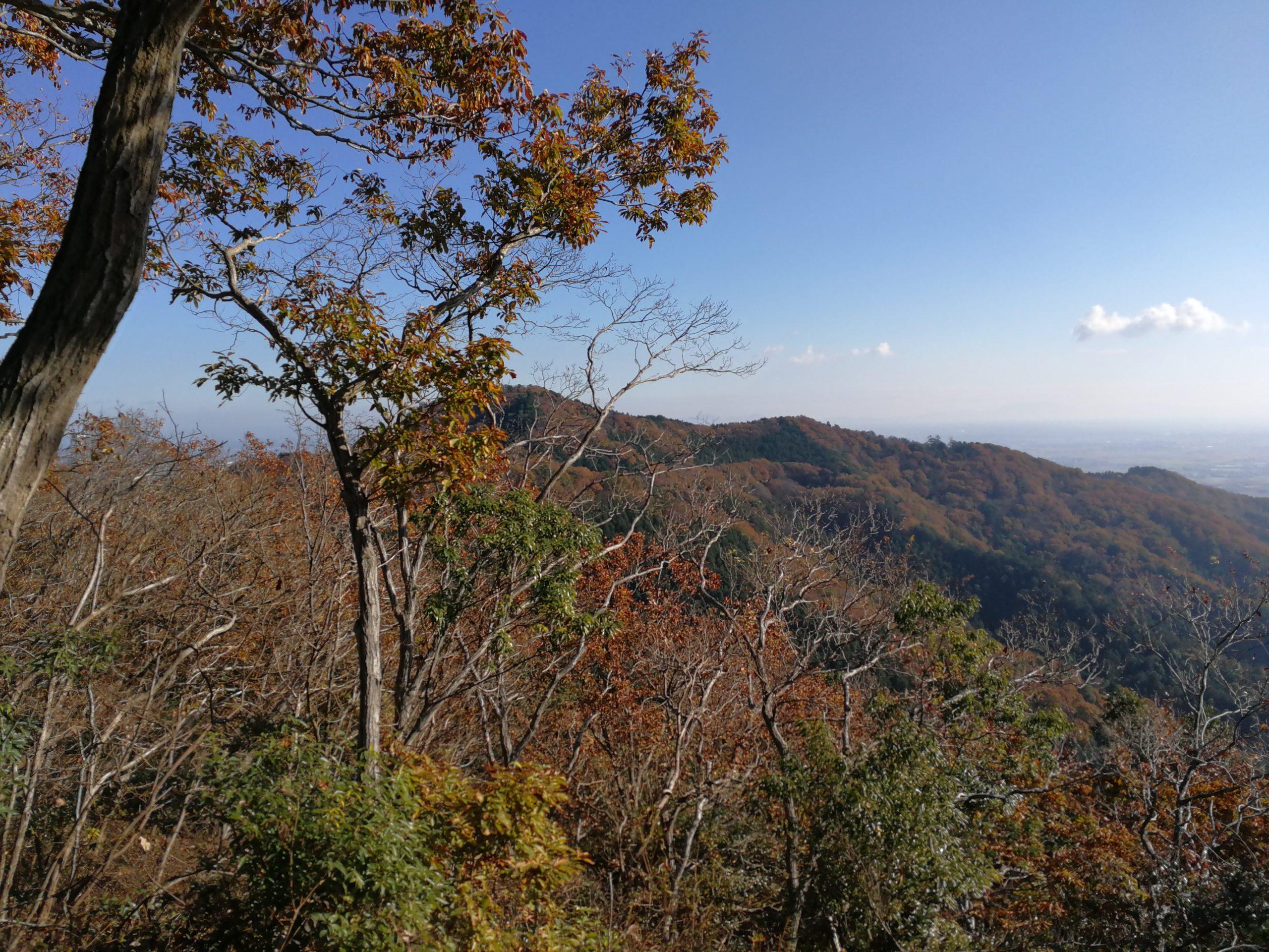 太平山からの眺め