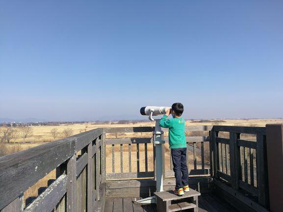 望遠鏡を覗いている末っ子くん