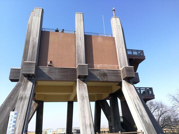 ウォッチングタワー